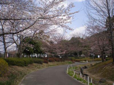 植物園 (14)