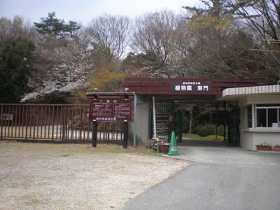 森林公園 (5)
