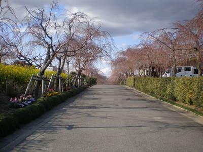 東谷山 (9)