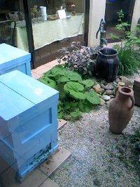 11 長坂養蜂場お店の中の巣箱