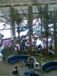16 浜名湖レークサイドホテル 2階からエントランス