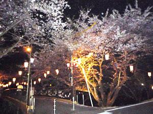 kagamihara