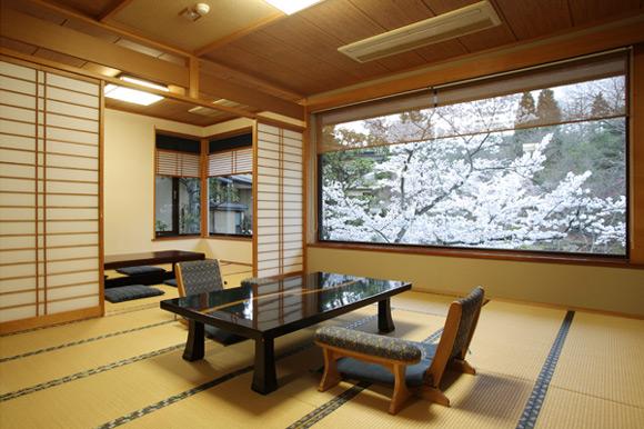 山神温泉 湯の元館